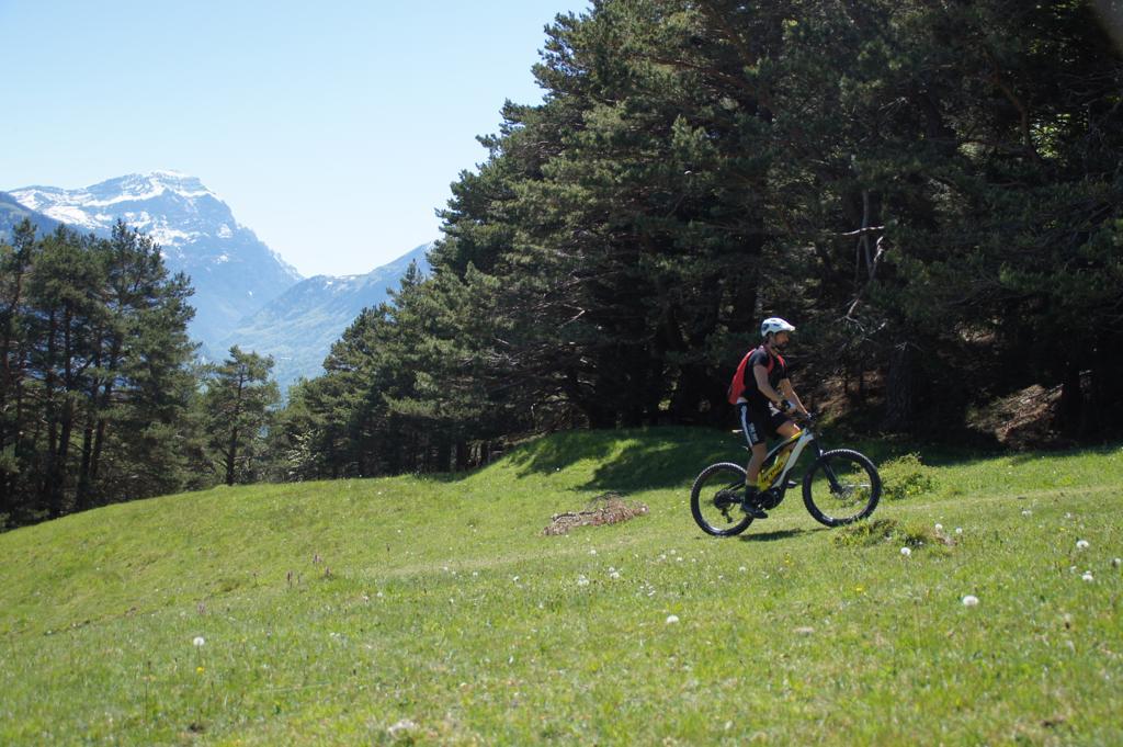greyp e-mountainbike